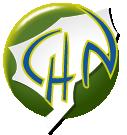 CH Novillars